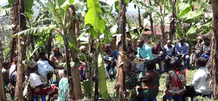 Repenser la Riposte Ebola (Suluhu Working Paper 5)